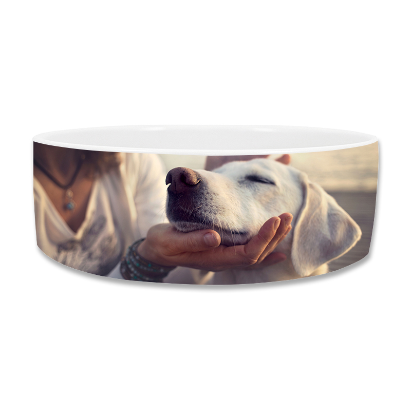 Pet Bowl 39oz White